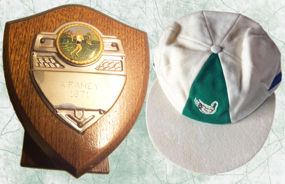 Shield and cap